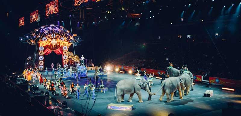 Cirque du Soleil thema