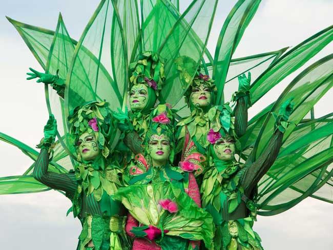 Profielfoto Groene Bomen